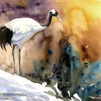 Red_crowned_crane_color_web_medium