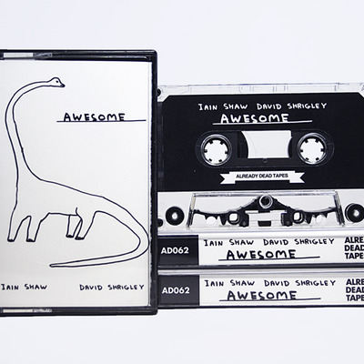 Iain shaw / david shrigley 'awesome' - cassette store day exclusive