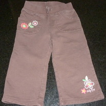 Brown Pants with Flowers-Baby Gap Size 12-18 Months
