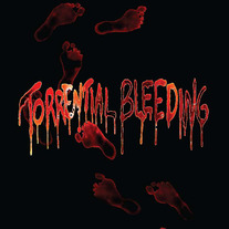 Torrential Bleeding - 2012 Demo medium photo