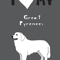 Great Pyrenees, 5x7 print