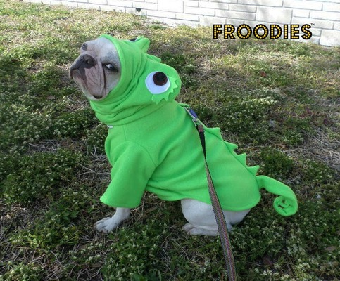 French Bulldog Halloween Costume