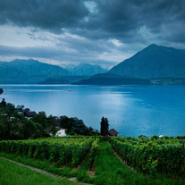 C024 Lake Thun Switzerland