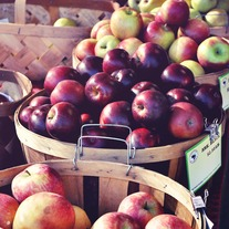 Apples_20small_medium