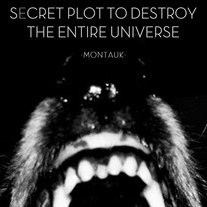 Secret Plot to Destroy the Entire Universe - Montauk 7""