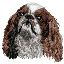King_20charles_20spaniel_202_20head_medium