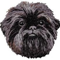 Affenpinscher_20head_medium