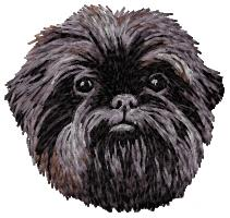 Affenpinscher_20head_original