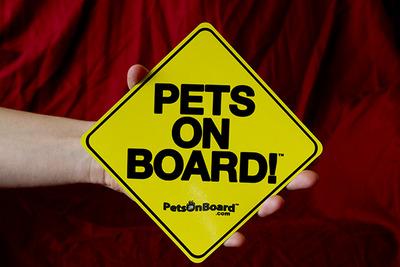 pets on board