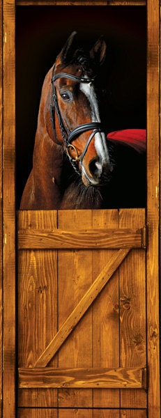 Door Sticker Horse Barn Stable Stall Mural Decole Film