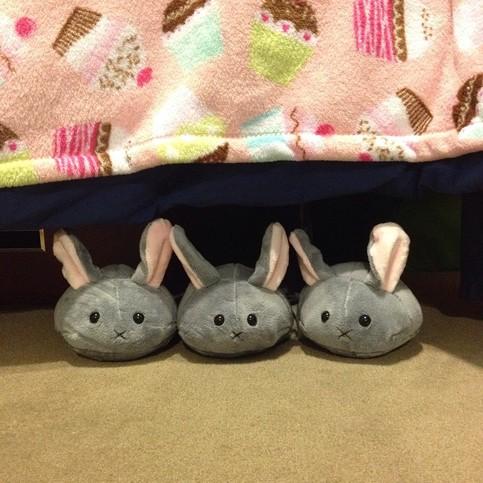 Cute Handmade Plush Dust Bunny 183 Kimchi Kawaii 183 Online