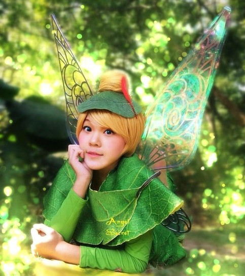 Wn1 Adult Tinkerbell Fairy Fancy Adults Costume Wings