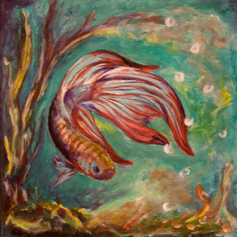Quot Beta Fish Quot Original Acrylic Painting On Storenvy