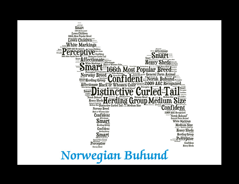 Norwegian Buhund, Custom Norwegian Buhund, Personalize Norwegian Buhund,  Pet Gift, Print, Dog Art, Pet Art, Pet Memorial, Custom Dog