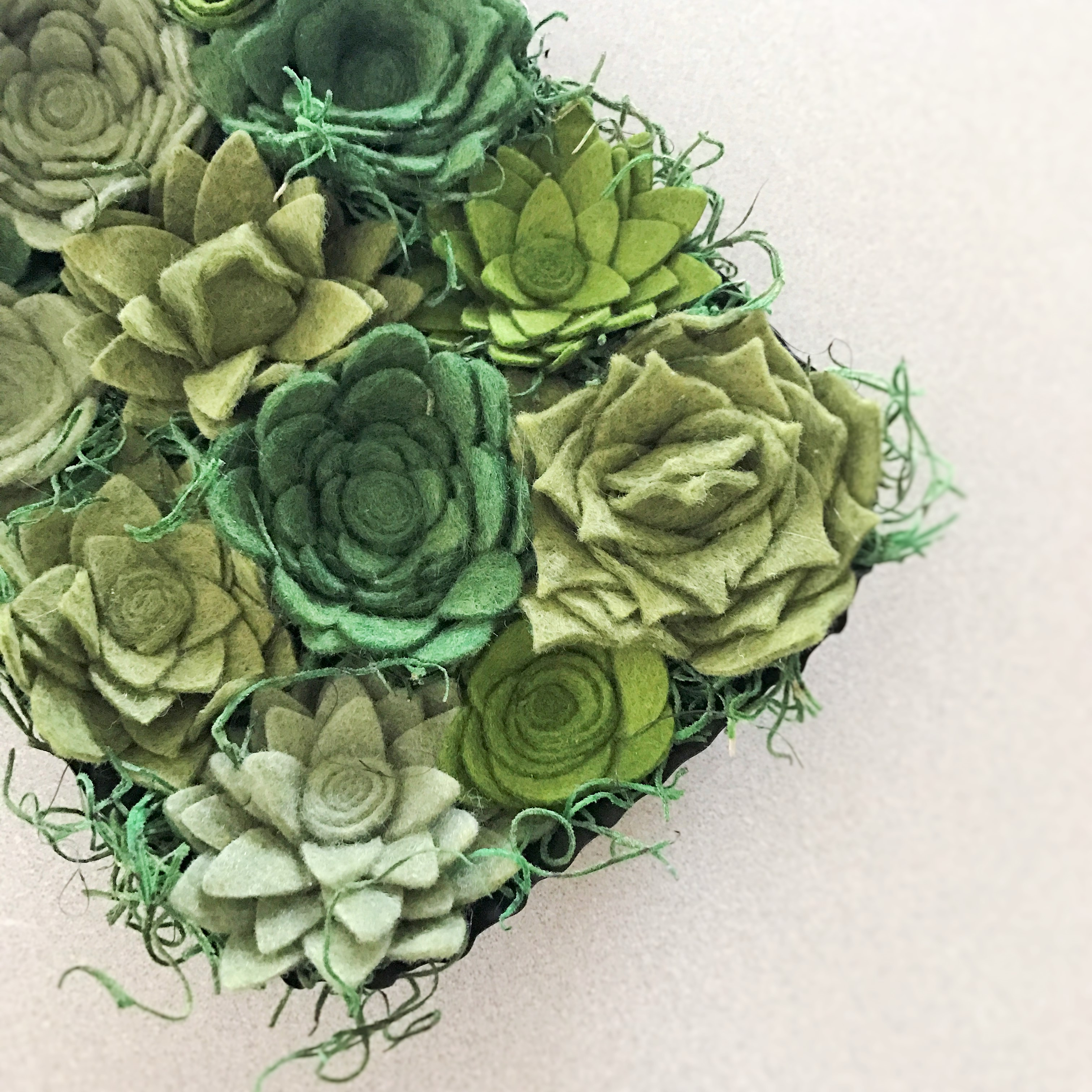 Felt Succulent Wall Box Humble Design Co Online Store Powered By Storenvy
