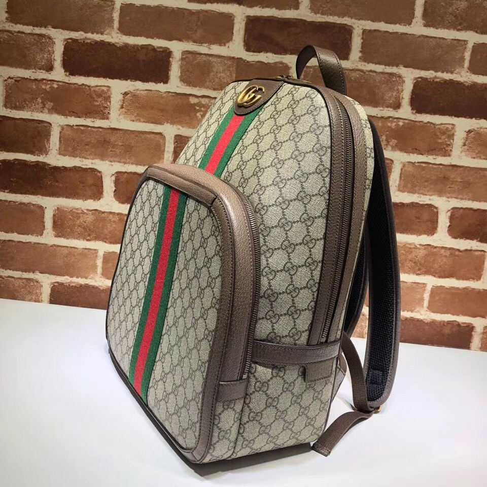 67a8f3400a651a Authentic Gucci backpack on Storenvy