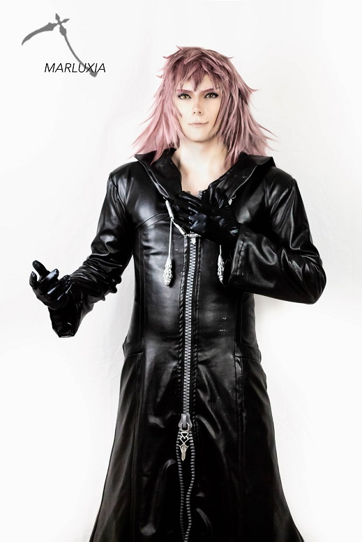 Marluxia Kingdom Hearts 3 Print From